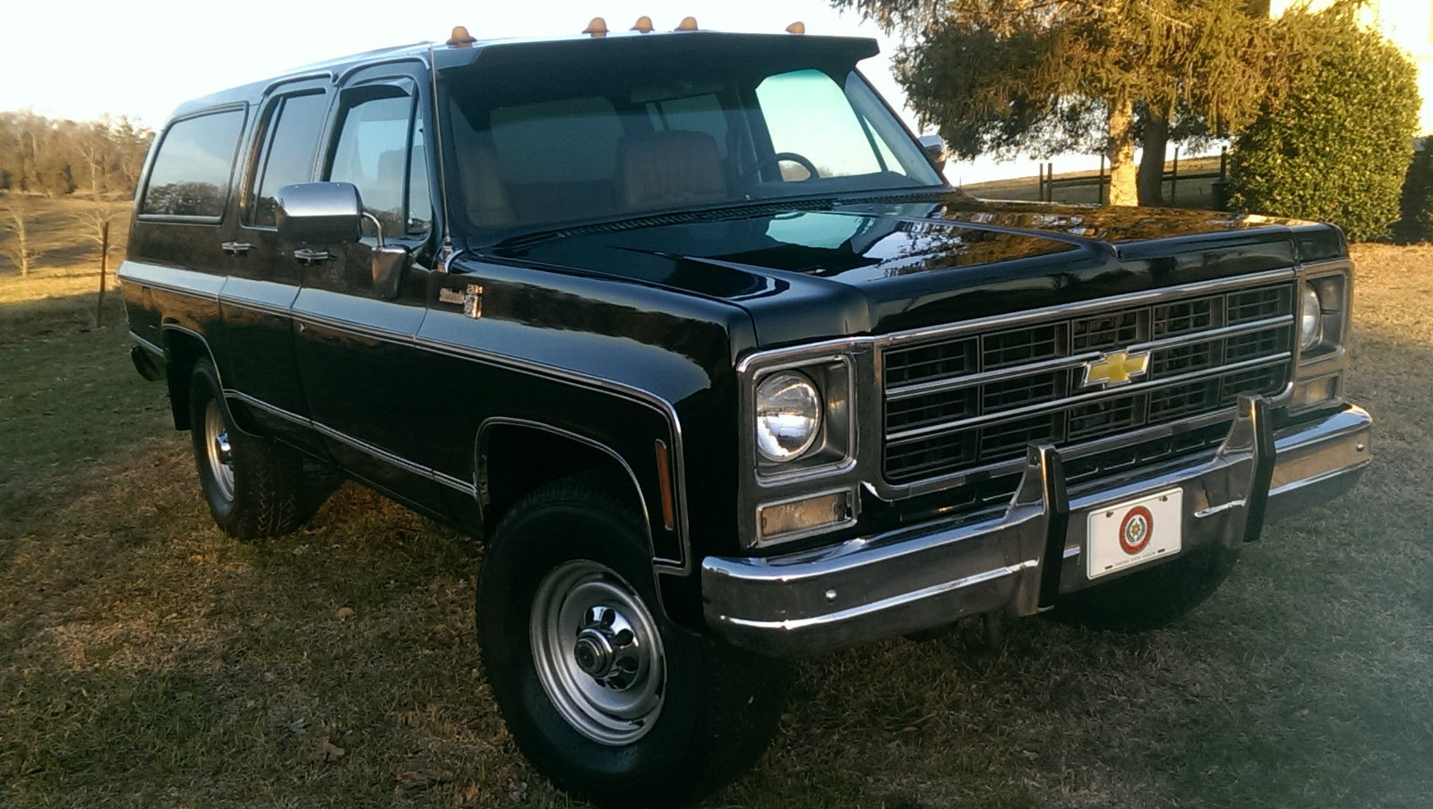 1979 Chevrolet Suburban Photos